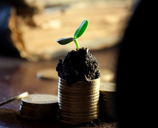 Investir ganhando pouco é possível. Descubra como