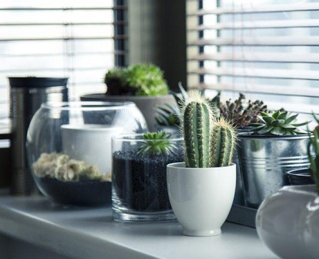 É possível decorar a casa gastando pouco?