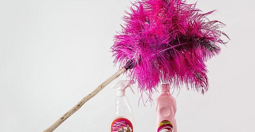 Dicas para economizar na limpeza da casa